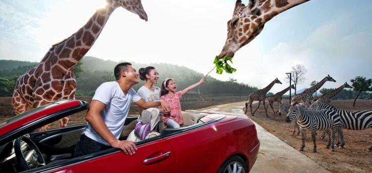 杭州野生動物世界