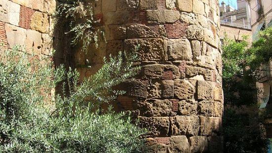 Torres de la Muralla Romana