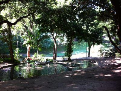 Parque Eduardo Guinle