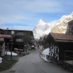 Murren User Photo