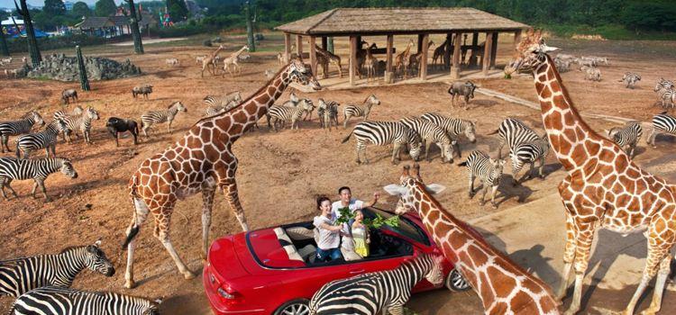 杭州野生動物世界1
