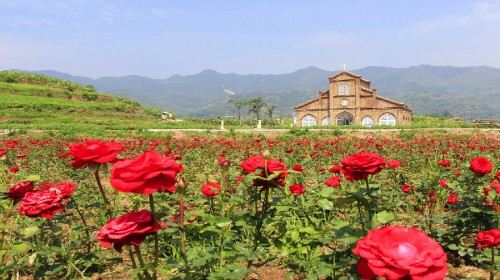 Dianjiang Letian Flower Valley