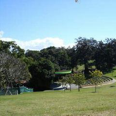 Parco Centrale del Lago User Photo
