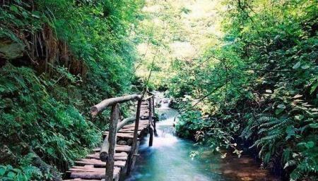Gouya Natural Scenic Resort