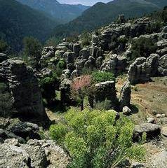 Gulluk Dagi National Park User Photo