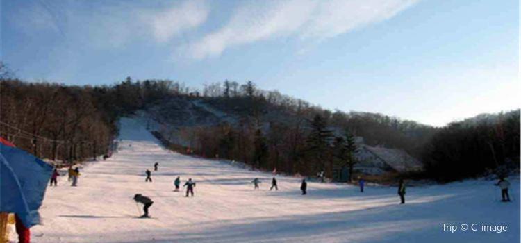 廟香山滑雪場2