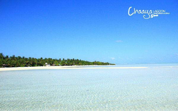 哈库拉岛图片
