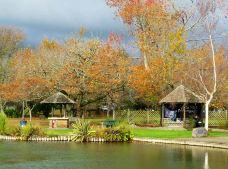 罗托鲁瓦湖-罗托鲁瓦-云游四海翁
