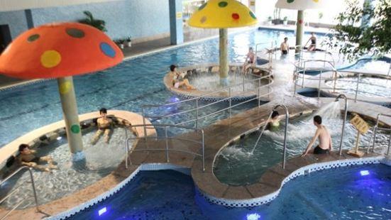 湯山東湖麗島溫泉