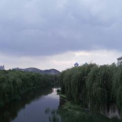 지난 국제정원화훼박람원 여행 사진