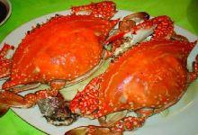舟山美食图片-梭子蟹