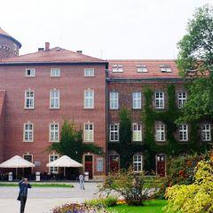 National Museum in Krakow User Photo