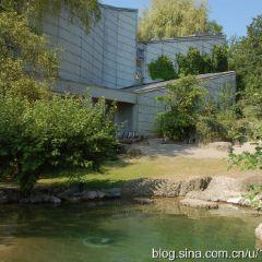 취리히 동물원 여행 사진
