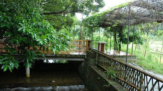 Jingui Mountain Villa