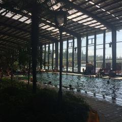 洪澤湖濕地溫泉度假村用戶圖片