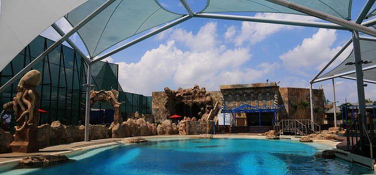 Adventure Cove Waterpark1