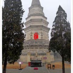 White Tower User Photo