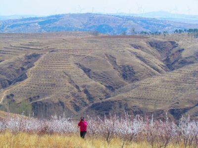 平頂山自然保護區