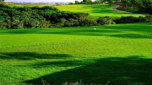 Gentle Uptown Golf Club