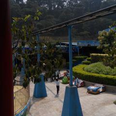 Nanning Sakura Valley Theme Park User Photo