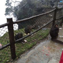Yixiantian User Photo