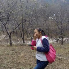 桃花峪用戶圖片