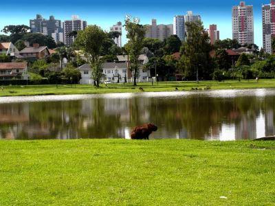 巴里圭公園