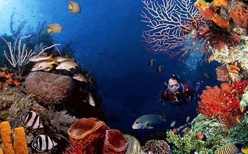 Haiyang Aquarium