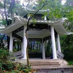Huanggang Park User Photo