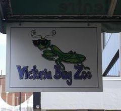 維多利亞昆蟲動物園用戶圖片