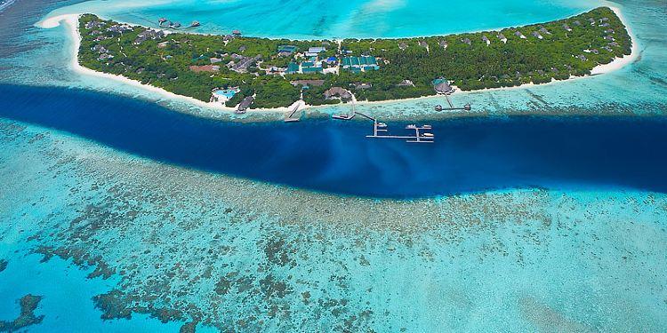 神仙珊瑚岛图片