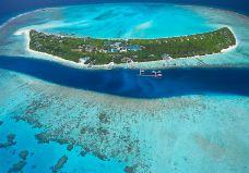 神仙珊瑚岛-贝塔桑