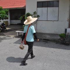 Wat Chiang Man User Photo