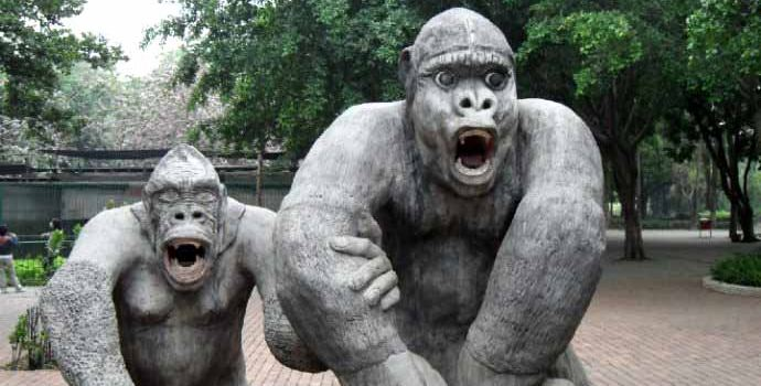 Nanning Zoo2