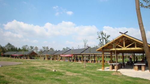 둥핑 국가산림공원(동평 국가삼림공원)