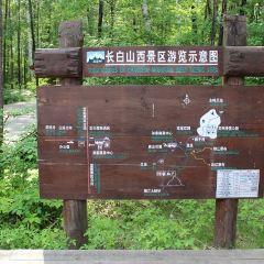 Yulan Waterfall User Photo