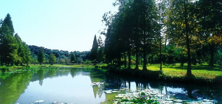 Liangfengjiang National Forest Park