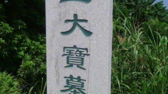 Wang Dabao Mu