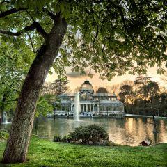 크리스탈 궁전 여행 사진