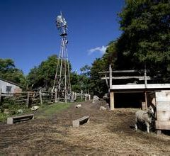 Riverdale Farm User Photo