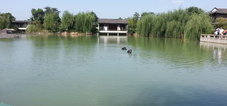 尚湖風景區2