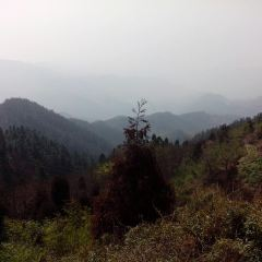 Dayunshan National Forest Park User Photo