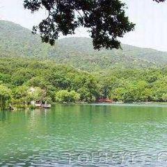Dinglin Mountainous Villa User Photo
