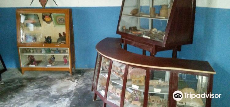 Annapurna Butterfly Museum2