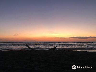 Nosara Beach (Playa Guiones)