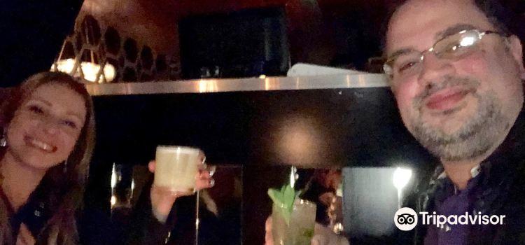 Belushi Martini Bar1