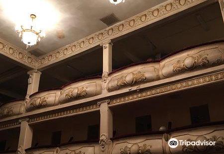 Primorskiy Regional Puppet Theater