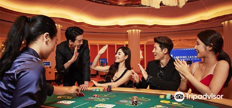 Landing Casino1