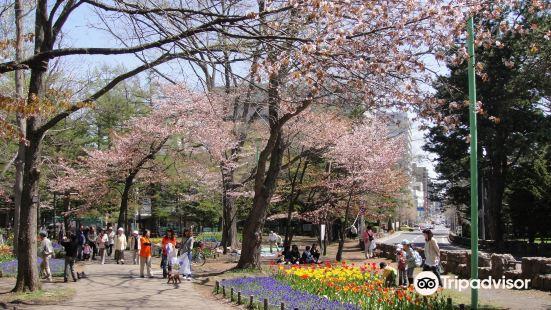 Maruyama Cemetery