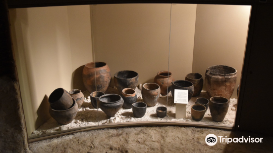 The Museum of the Iron Age